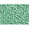 Seedbead 8/0 Metallic Mint Green Matte Terra Color